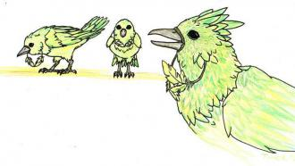 vogelgruengelb8gb.jpg